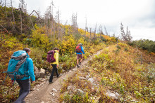 Three Backpackers Hike Along The Siyeh Pass Trail In Glacier National Park In Autumn.