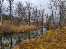 Autumn Landscape With A River. Narrow River.
