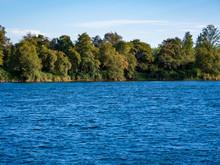 Lake Natoma Shoreline