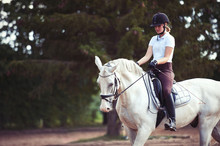 Young Lady Riding A Trotting H...