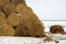 Stack Of Hay Stacked In The Pyramids On The Field In Winter, Ukraine