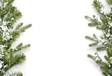 Beautiful Christmas Tree Branc...