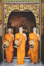 Newly Ordained Buddhist Monk P...