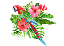 Summer Bouquet Of Tropical Flo...