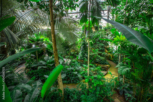 queen-sirikit-botanical-garden-chiang-mai-19september2019-atmosphere-in-the-nursery-of-various-garden-plants-winter-flowers-located-mae-rim-district-a-conservation-and-tourist-attraction-thailand