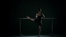 Little Ballet Dancer Wearing A...