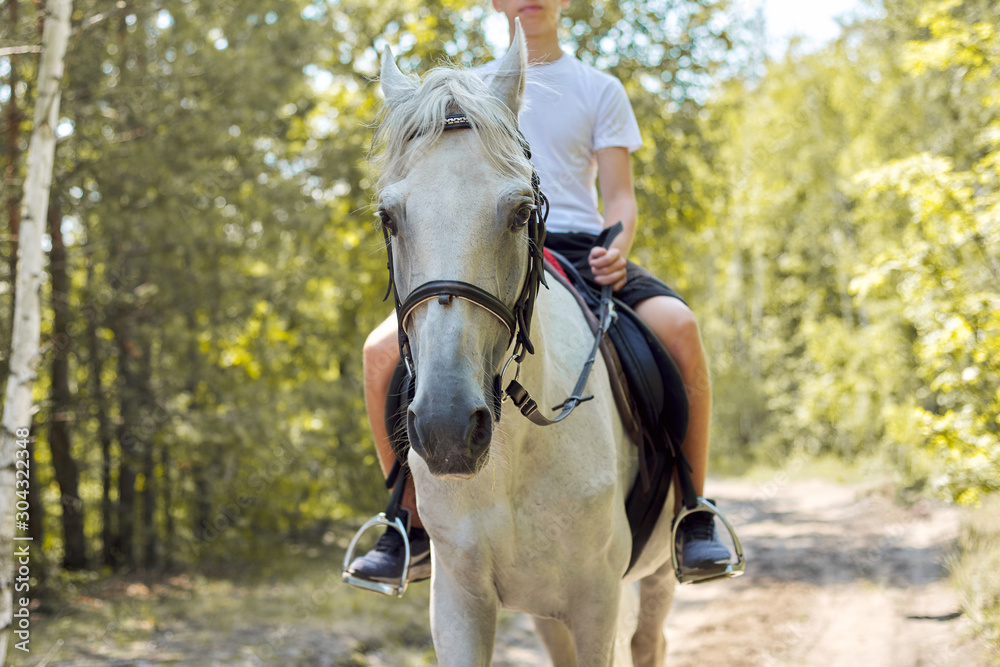Fototapety, obrazy: Close up of white horse running with teenage rider boy