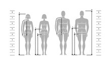 Silhuettes Of Man And Women In Full Length With Measurement Lines Of Body Parameters.