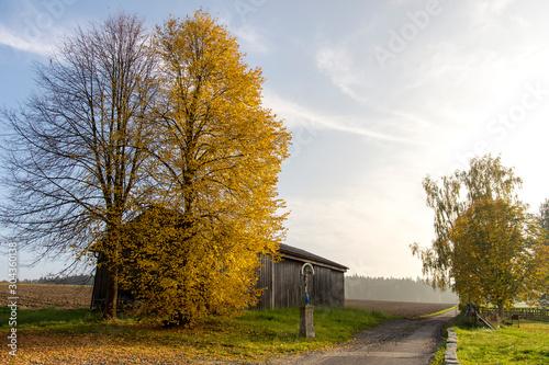 Herbst #304360138