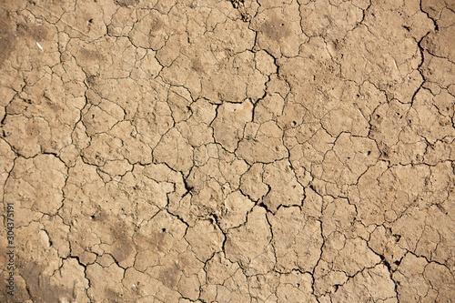 乾燥によってひび割れた大地 Canvas Print