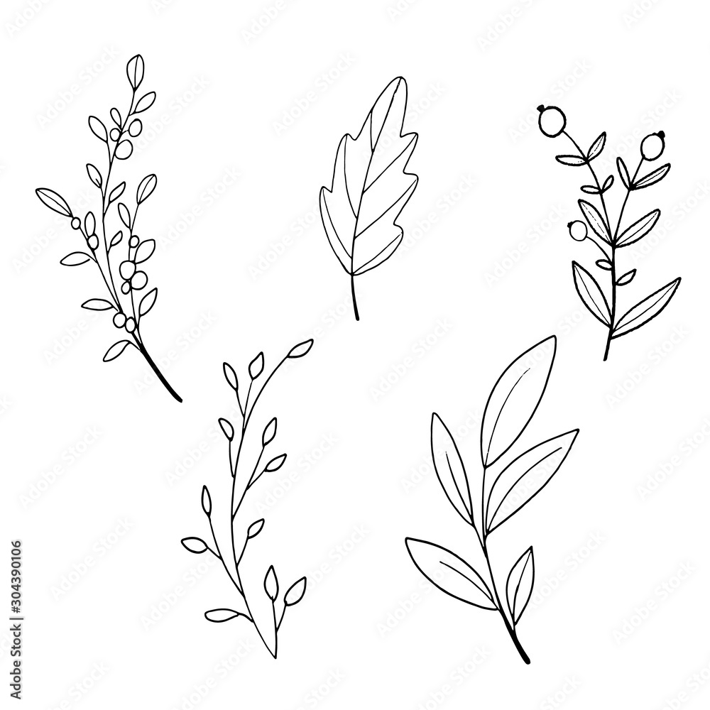Kwiatowy ozdoba gałąź liść linii roślin