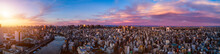 Panorama Of Central Of Tokyo At Dawn, Japan