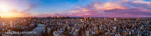 Aerial shot of central of Tokyo at dawn, Japan Wallpaper Mural