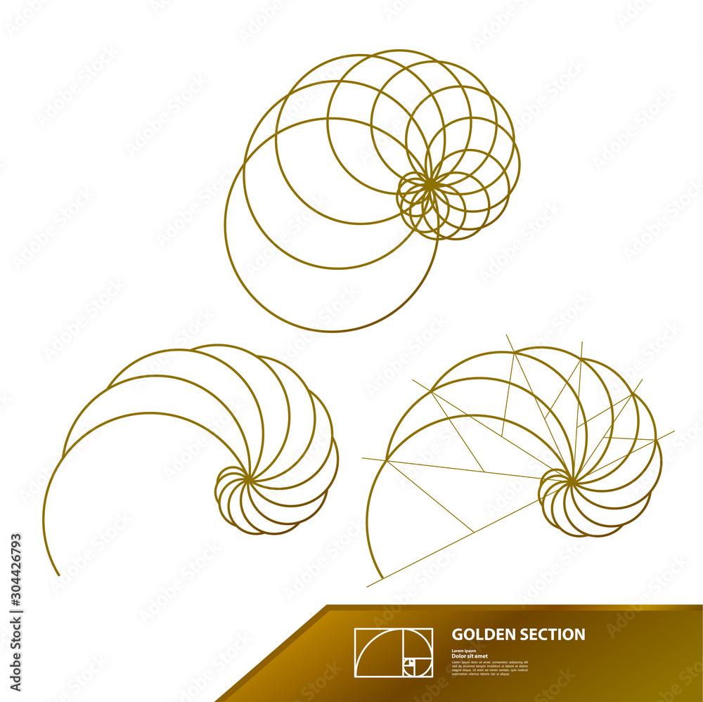Fototapeta Golden ratio for creative design vector illustration.