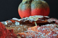 Autumnally Decorated Autumn Foliage With Pumpkin,snow And Ice Crystals