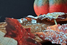 Autumnally Decorated Ice Cryst...