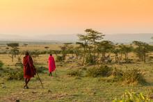 Bush Walk With Maasais In Kenya