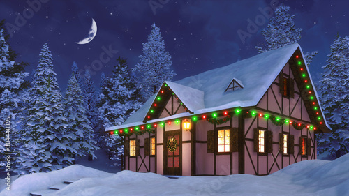 Obraz Snowbound half-timbered rural house decorated for Christmas among snowy  fir forest at winter night with half moon in the starry sky. 3D illustration for Xmas or New Year holidays. - fototapety do salonu