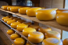 Lots Of Whole Cheese In Factory