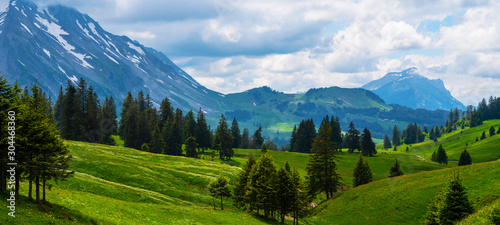 Idyllic alpine landscape scenery with fresh green meadows, blooming flowers, and snowcapped mountain tops in spring.