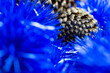 Leinwanddruck Bild - selected focus on pinecone surrounded by fluffy blue Christmas tree decorate