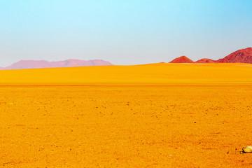 The desert of Namibia, Africa