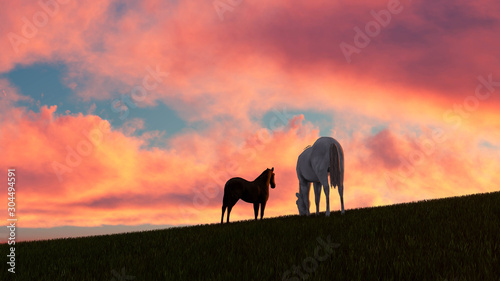 Poster de jardin Corail Horse Outdoor at Sunset 3D Rendering