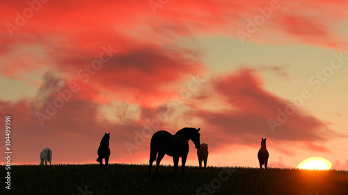 Fond de hotte en verre imprimé Corail Horse Outdoor at Sunset 3D Rendering