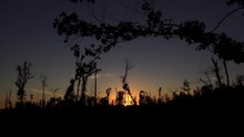 Great Sunset On Natchez Trace ...