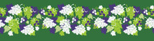 Vector Green Grape Vine Illust...