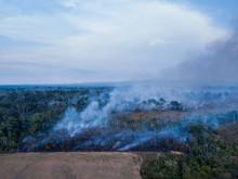 Burning Of The Amazon Rainfore...