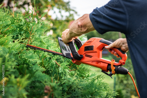 Trimming overgrown green bush by electric hedge clippers