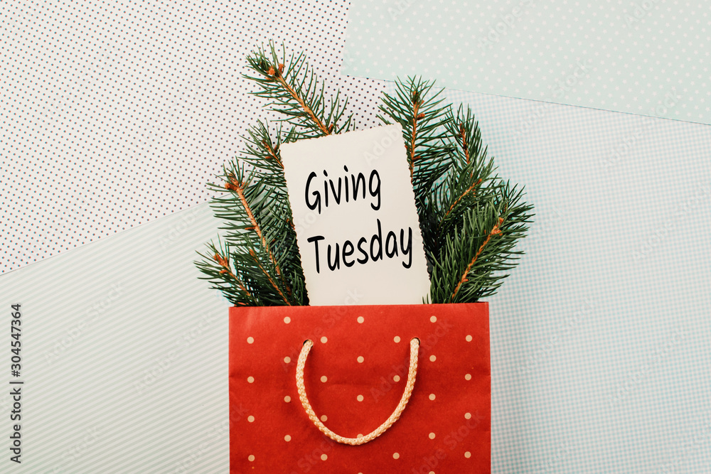 Fototapeta Giving Tuesday concept. Minimal flat lay with handwriting text Giving Tuesday in red gift bag and fir tree branches on pastel background.