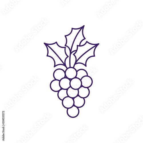 Isolated grapes fruit line vector design Fototapete