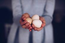 Woman Hand Eggs.