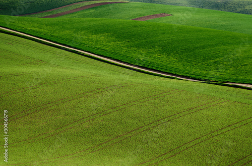 Fototapety, obrazy: Rural landscape with road
