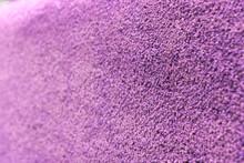 Purple Wool Carpet Close Up