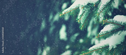 Winter Holiday Evergreen Christmas Tree Pine Branches Covered With Snow and Falling Snowflakes, Horizontal - 304584361