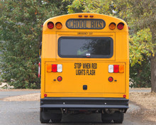 Rear Of A Traditional Yellow School Bus With Trees All Around. School Bus Yellow Is A Color That Was Specifically Formulated For Use On School Buses In North America In 1939.