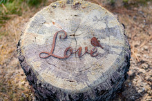 Love Sculpture On An Old Stump At A Farm In Southern Oregon