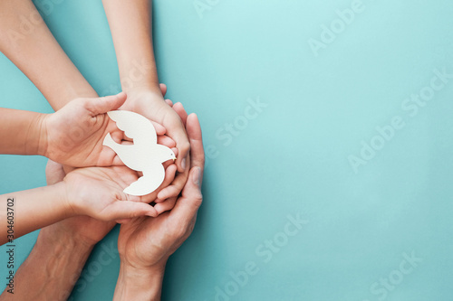 Fotografering Adult and child hands holding white dove bird on blue background, international