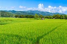 Landscape View Of Huts In The Green Rice Field On The Mountain With Blue Cloud Sky