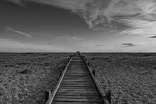 Boardwalk Crosses Stony Dungen...