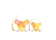 可愛いネズミ、2匹