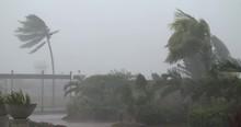 Violent Hurricane Eye Wall Winds Lash Town As Major Hurricane Makes Landfall - Noul