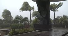 Hurricane Winds Thrash Palm Trees As Storm Hits - Noul