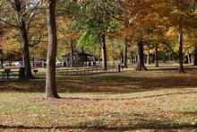 A Beautiful Fall Scene In The ...
