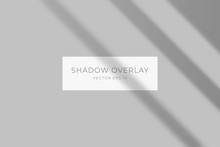 Transparent Shadow Overlay Effect For Branding. Long Shadow On Flat Surface. Light From The Window On The Wall. Background For Your Design. Vector Eps 10.