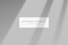 Transparent Shadow Overlay Effect For Branding. Long Shadow On Flat Surface. Soft Light From The Window On The Wall. Background For Your Design. Vector Eps 10.