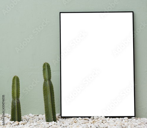 Pair of two cacti in stone gravel pebbles adjacent next to plain empty blank bla Wallpaper Mural